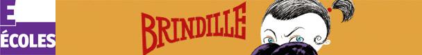 « Brindille », de Rémi Courgeon, séquence pédagogique CE1 et CE2